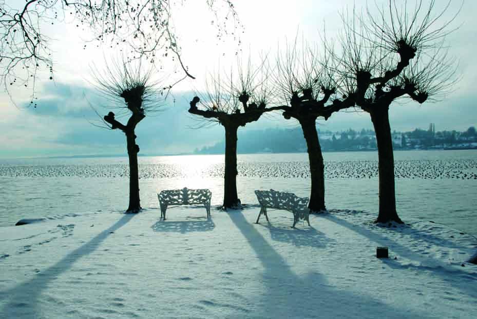 Ausblick_winter_InselMainau_LR