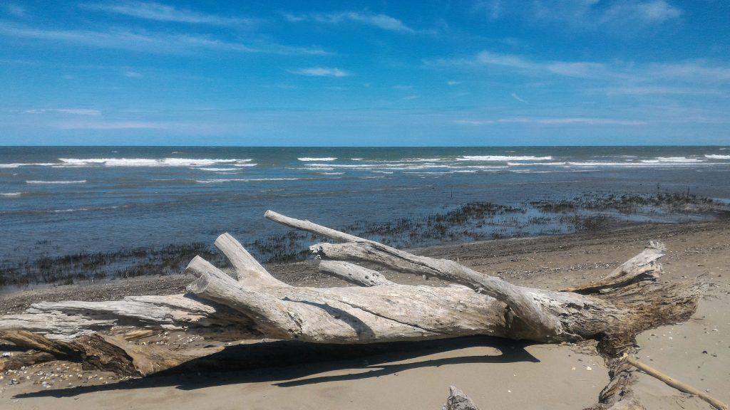 spiaggia parco naturale Lido di Spina