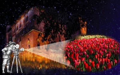 immagine evento al castello di Pralormo in notturna