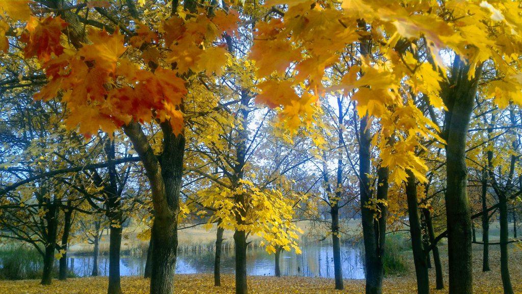 panorama natura in autunno