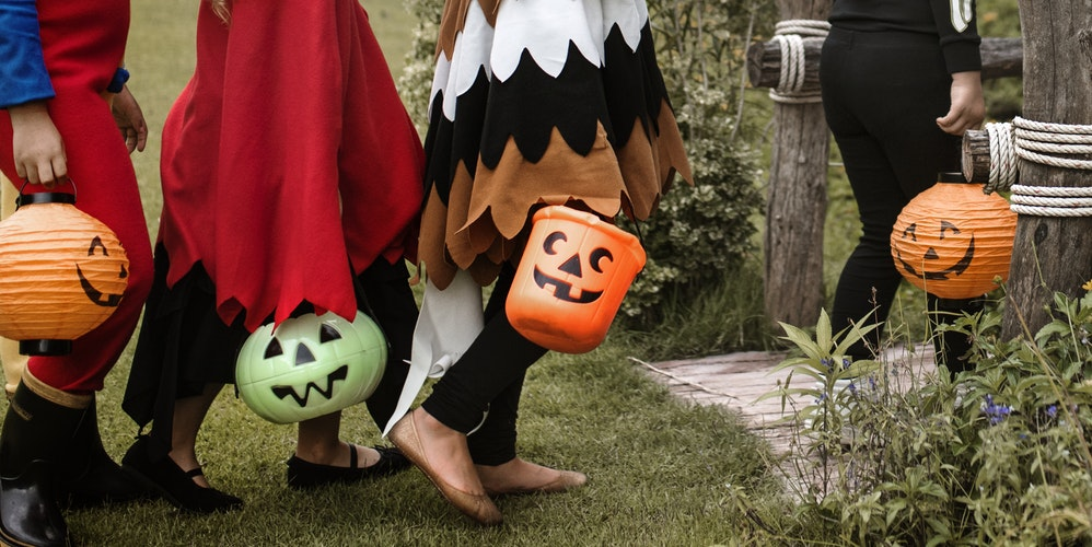 Perche Non Festeggiare Halloween.Festeggia Halloween Con Viviparchi Eventi E Attivita Ottobre 2018