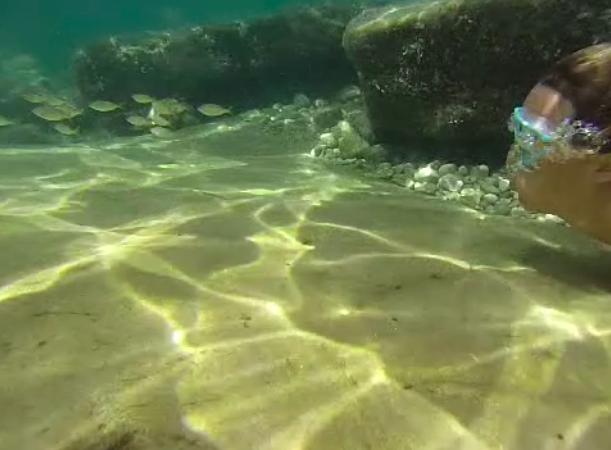 cosa fare in vacanza ad Ischia con i bambini